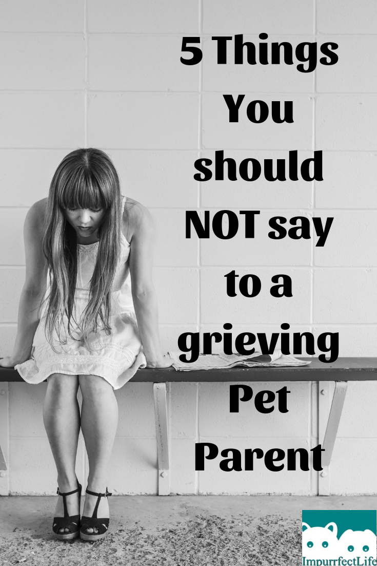 things you should not say #impurrfectlife #grief #petloss #advice