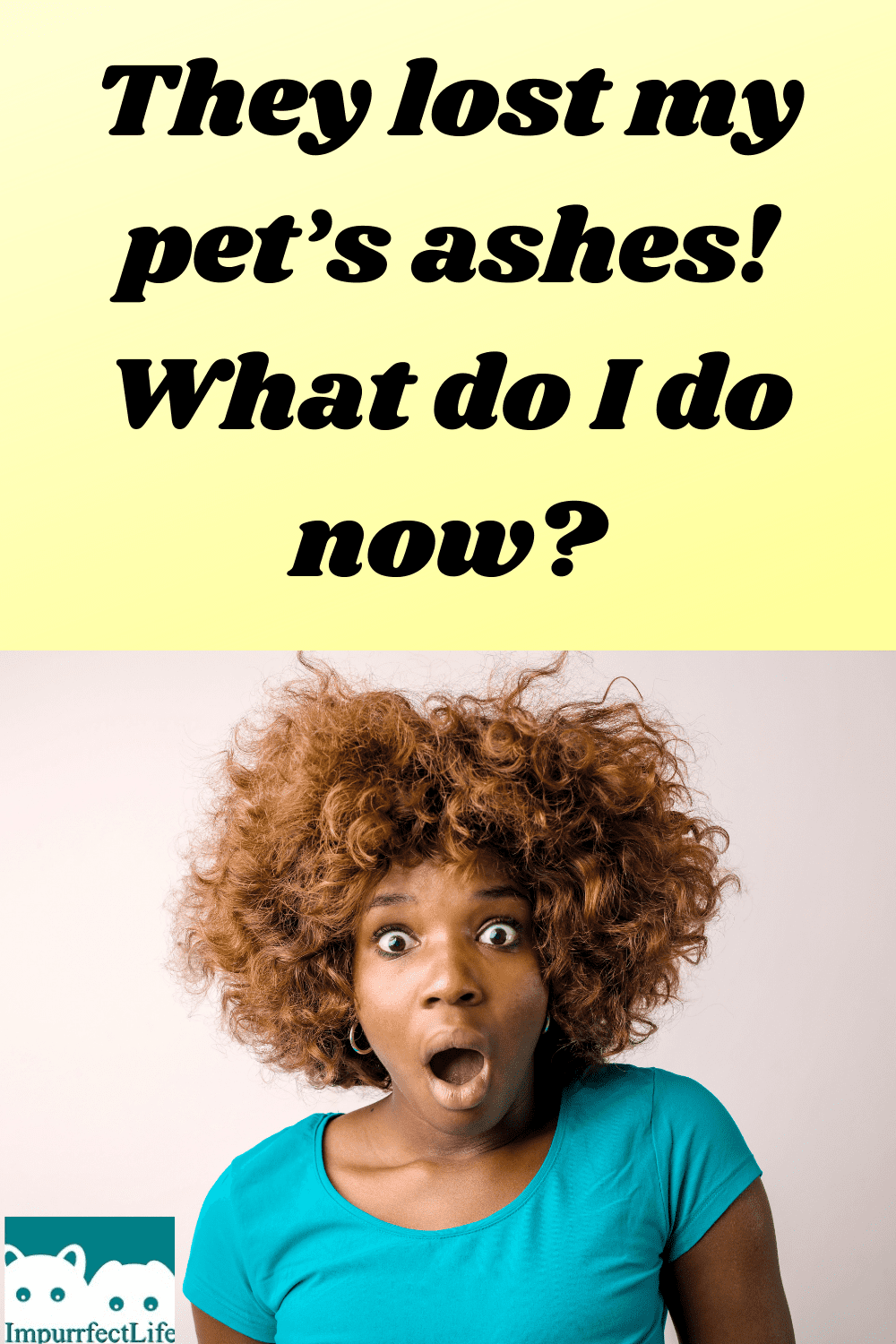 lost pets ashes #impurrfectlife #pets #grief #cremation #ashes